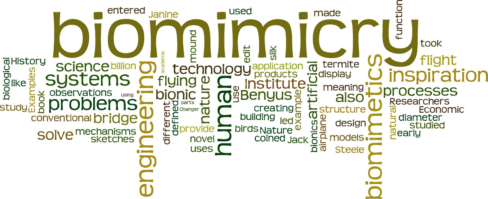 Biomimicry tag cloud